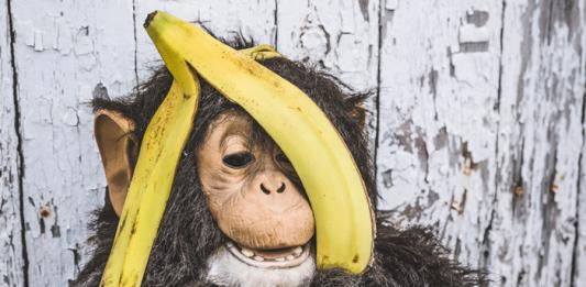 p-Wert: Affenbanner und Bananenverkauf